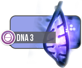 Theta Healing DNA3 Course Book